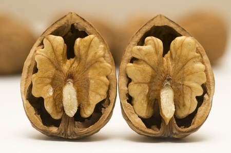 Walnut: two walnut shells