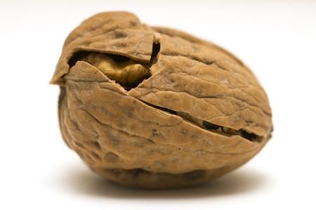walnuts: walnut shell cracked