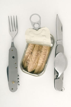 conserved fish with knife and fork photo