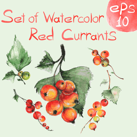 Set of watercolor red currants for art design or pattern. Set of design elements Vettoriali