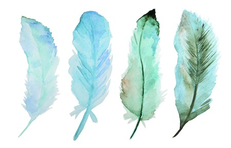 Set of watercolor feathers. A set of four color watercolor feathers 스톡 콘텐츠