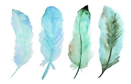 Jogo de penas de aquarela. Um conjunto de quatro penas de cor aquarela Imagens