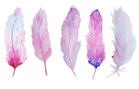 Set of watercolor feathers. A set of four color watercolor feathers Banco de Imagens