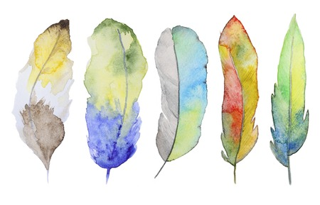 Set of watercolor feathers. A set of four color watercolor feathers Archivio Fotografico