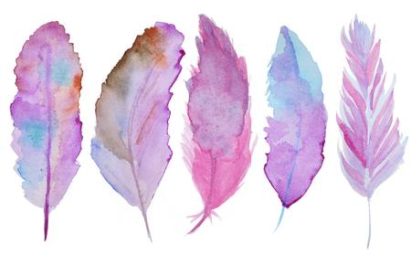 mosca: Conjunto de plumas de acuarela. Un conjunto de cuatro plumas de acuarela de color