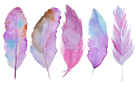 fly: Set of watercolor feathers. A set of four color watercolor feathers Stock Photo