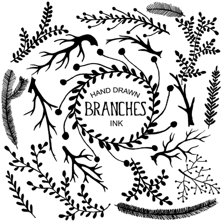 branches with leaves: Set of hand drawn branches and leaves. Ink illustration.