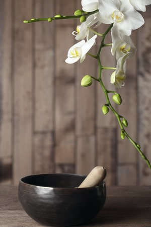 Flowers white orchid on a dark wooden background close-up. The shape of the frame. Tibetian singing bowl Stock fotó