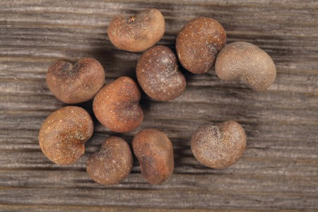 adansonia: Baobab seeds an old and brown wood background.