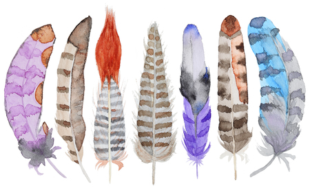 Set of watercolor feathers. A set of four color watercolor feathers Banque d'images