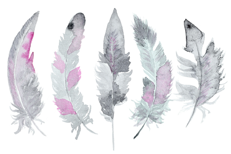 Set of watercolor feathers. A set of four color watercolor feathers Фото со стока