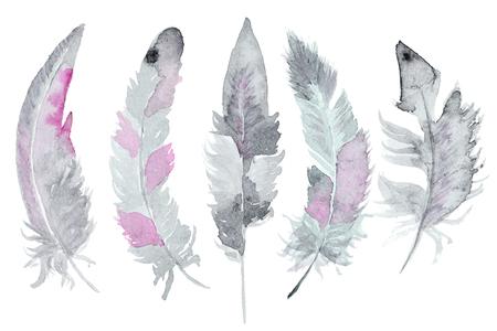 Set van aquarel veren. Een set van vier kleuren aquarel veren