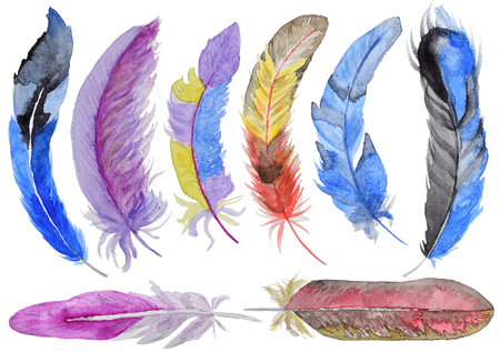Set of watercolor feathers. Hand-drawn watercolor feather for design. Archivio Fotografico