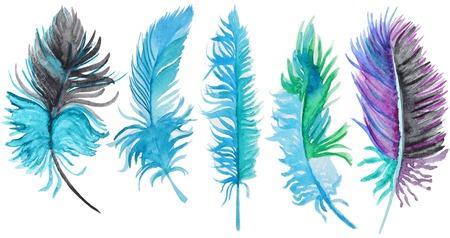 水彩羽のセット。多色水彩羽のセット 写真素材