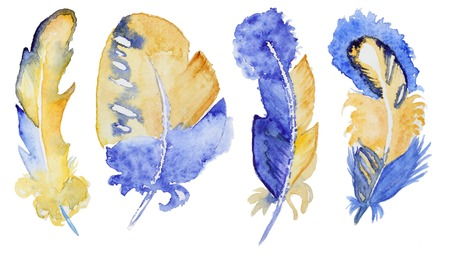 Watercolor gold feathers set isolated on white. Hand painted watercolor gold feathers for making greating cards, invitation design and other art project