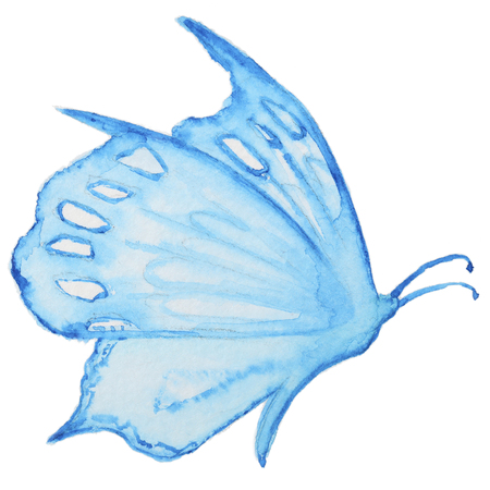 butterfly isolated: Watercolor blue butterfly isolated on white. Hand painted watercolor blue butterfly multicolored for making greating cards, invitation design and other art project Stock Photo
