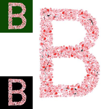 lettre alphabet: Aquarelle dessin� � la main Sakura Flower Alphabet. Lettre de monogramme B Fait de Sakura Fleurs