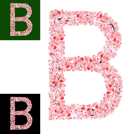 flower alphabet: Watercolor hand drawn Sakura Flower Alphabet. Monogram Letter B Made of Sakura Flowers Stock Photo