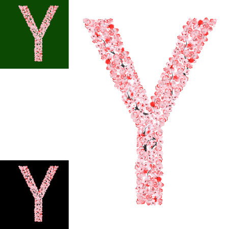 flower alphabet: Watercolor hand drawn Sakura Flower Alphabet. Monogram Letter Y Made of Sakura Flowers Stock Photo