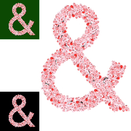 ampersand: Watercolor hand drawn Sakura Flower ampersand. Monogram ampersand Made of Sakura Flowers Stock Photo