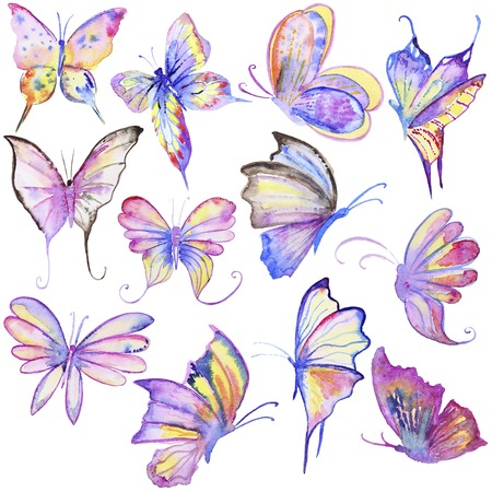 Watercolor hand drawn butterflies collection. Hand painted watercolor butterfly in Hires. Multicolored in different style. Perfect for wedding invitations, greeting cards, quotes, blogs, posters and DIY