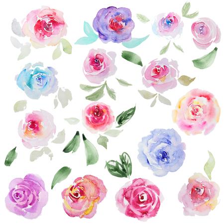 抽象的な水彩画のばら色の花のコレクション。白い背景の美しい水彩画のばら色の花のセットします。結婚式招待状、グリーティング カード、引用 写真素材