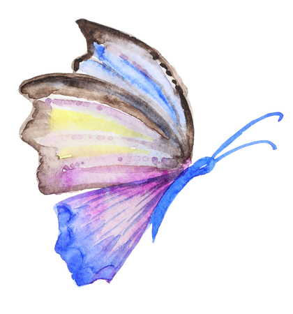 Abstract Watercolor hand drawn purple butterfly. Hand painted watercolor butterfly in Hires.  Perfect for wedding invitations, greeting cards, quotes, blogs, posters Archivio Fotografico