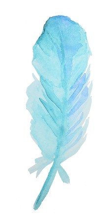 bird feathers: Hand-drawn Watercolor blue Feather isolated on white background