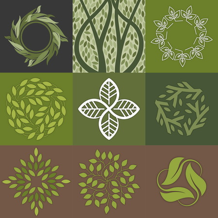 centers: Set of green leaves design. Perfekt for cosmetic produkt, medicine centers, yoga classes and organic food.