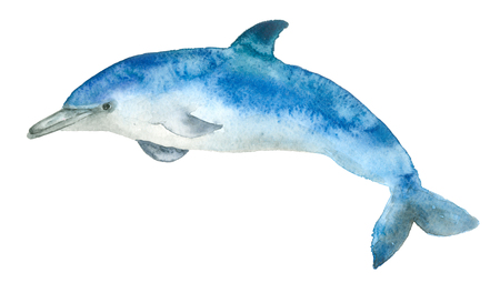 Watercolor blue dolphin Banque d'images