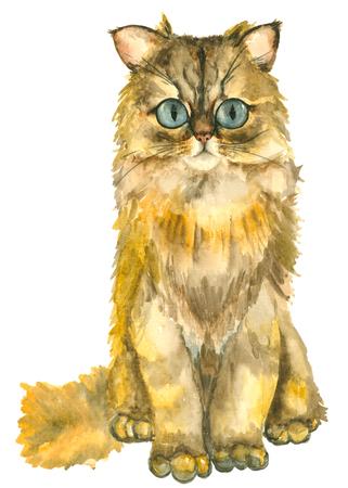 Acquerello mano disegnati gatti Archivio Fotografico - 84671575