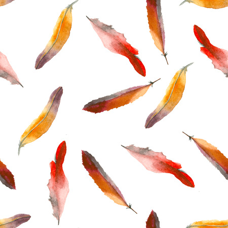 水彩画の羽模様
