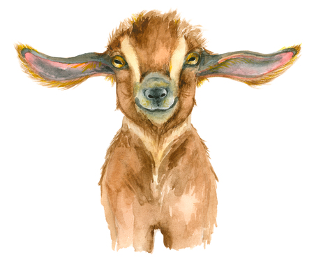 Watercolor Goat head Stock Photo