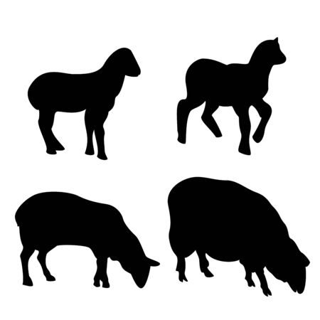 Sheeps silhouette set