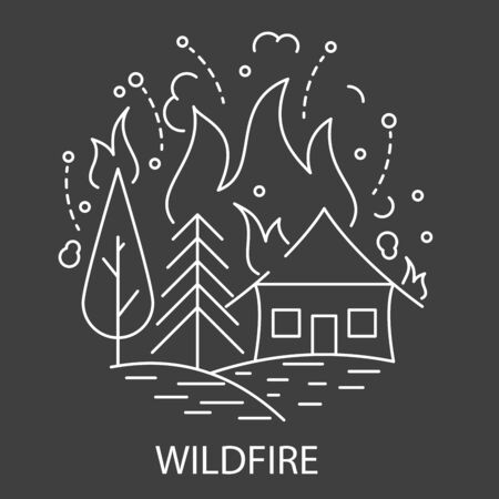 Wildfire Natural Disaster