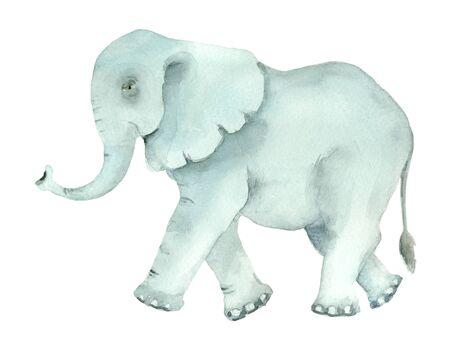 hand drawn turquoise elephant