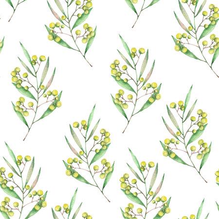 Watercolor mimosa pattern Imagens