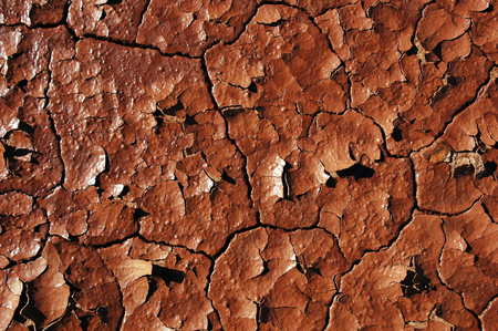 lack of water: dry soil in Rudall River area, Western Australia
