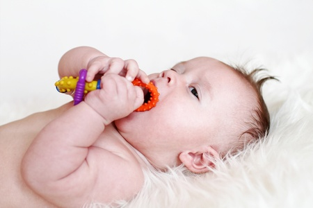 The baby plays a rattle  3,5 months   Stock Photo - 17420897