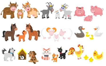 yeanling: Set of domestic animal  Stock Photo