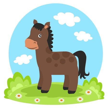 horse on glade photo