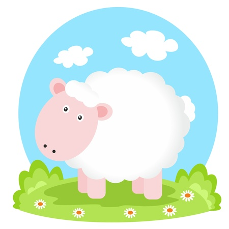 sheep on glade photo