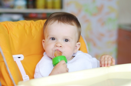 nice baby age of 11 months eats fruits by using nibbler photo