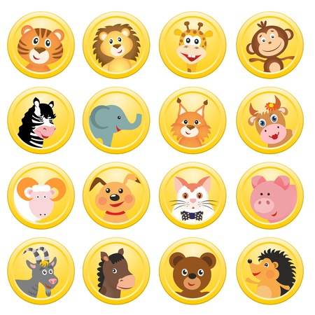 set of different animals in yellow circles photo