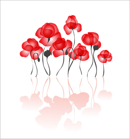 red poppies elegant vector background