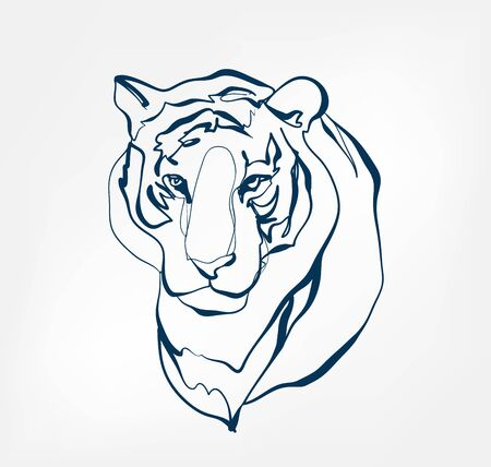 tiger vector animal wild one line