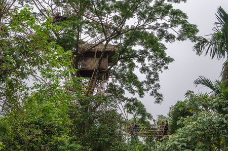 waterscapes: Tree House located in Asias cleanest village Mawlynnong, Meghalaya.
