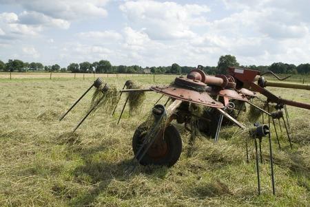 turn around hay to dry photo