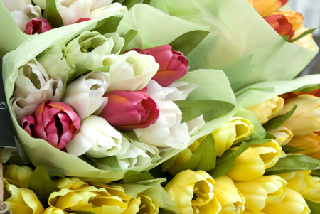 souvenirs: tulips in different colors from Holland Stock Photo