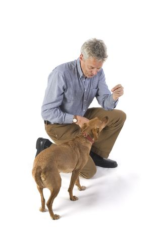 training the dog for obedience with rewards Stock Photo - 1729294